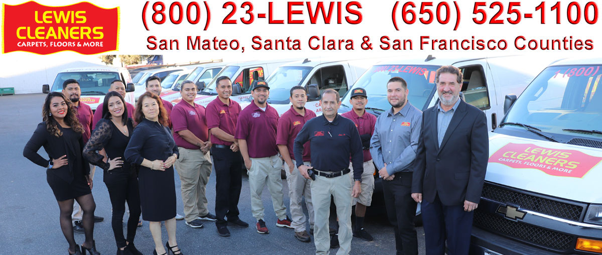 lewis Cleaners Team